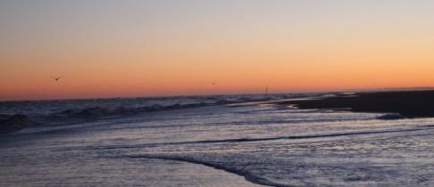 Ein schöner Morgen am Strand