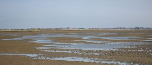 Wattwanderung Norderney – Festland
